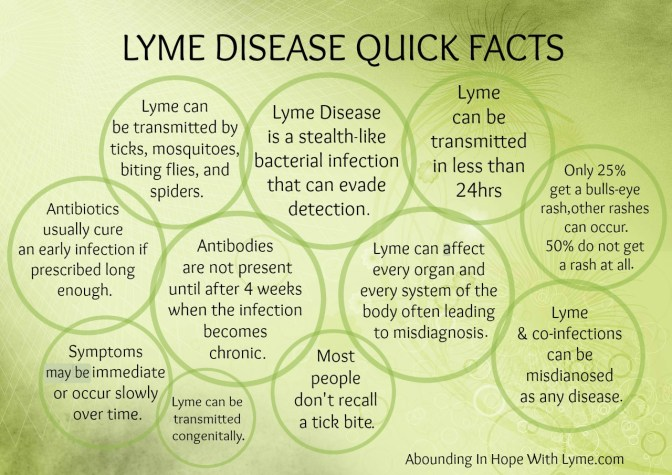 Chronic Lyme Disease Fact or Fiction?